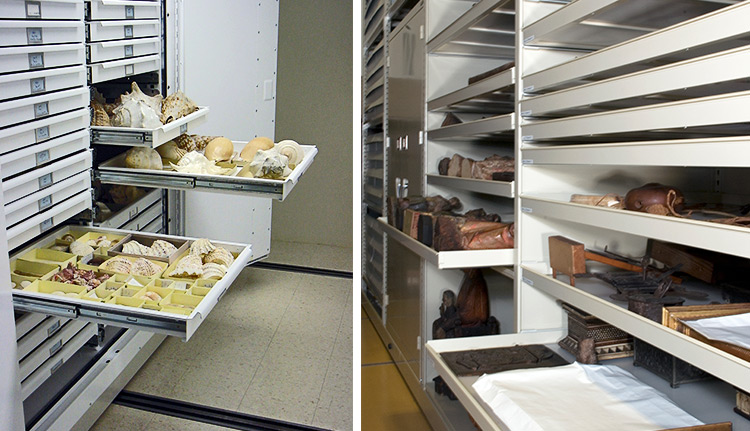 Museum Storage | Advanced Companies